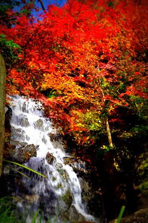 滝とハレーション(2)