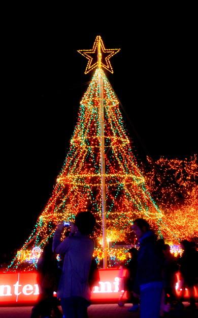 Brighteness Tree?