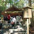 Photos: 伊勢神宮内宮 別宮 荒祭宮  IMG_6244_2