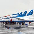 Photos: T-4 勢ぞろい(^_-)-☆ IMG_7135_3