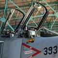 Photos: 飛行開発実験団 F4EJ改 #393 IMG_8584_2