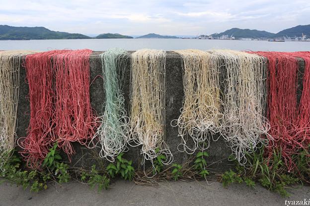漁網のある風景6