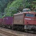 Photos: 3097レ EF81 729+コキ