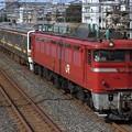配9832レ EF81 141+211系高タカB6+B4編成 6両
