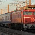 Photos: 9702レ EF81 137+24系 6両