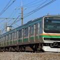Photos: 870M E231系宮ヤマU503編成 10両