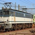 Photos: 9171レ EF65 2095+バラストレギュレーター 1両