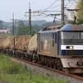 Photos: 9172レ EF210 113+チキ