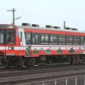 Photos: 1159D 鹿島臨海鉄道6000形6006