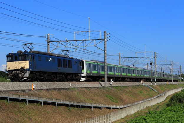 Photos: 配9733レ EF64 1032+E231系東トウ520編成 8両