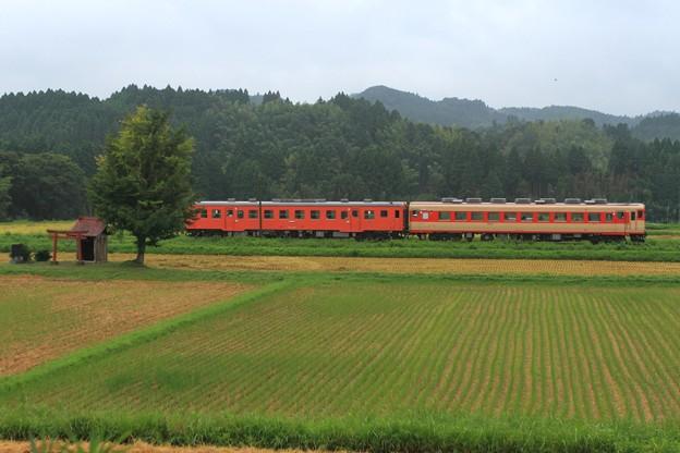 104D いすみ鉄道キハ28-2346+キハ52-125