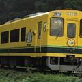 Photos: 61D いすみ鉄道いすみ300型301号車