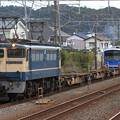 9865レ EF65 2119+コキ+伊豆箱根鉄道5000系5506F 3両