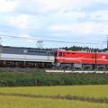 Photos: 9171レ EF65 2060+EH800 4