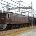 Photos: 配9749レ EF64 37+C61 20+オヤ12-1