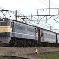 回9891レ EF65 501+旧型客車 3両