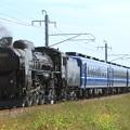 試9631レ EF60 19+12系 5両+C61 20