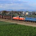 配9840レ EF65 501+DD51 895+旧型客車 2両