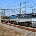 配6794レ EF65 2074+EF66 113+コキ
