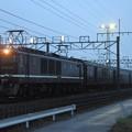 回9742レ EF64 1001+旧型客車 7両+EF81 97