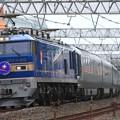 8009レ EF510 515+E26系 12両