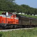 試9221レ DD51 895+旧型客車 2両+DD51 888