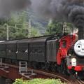 1001レ C56 44+E101+旧型客車 7両