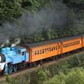 1003レ C11 227+旧型客車 7両+ED501