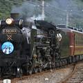 5002レ C58 363+12系 4両