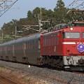 9020レ EF81 97+E26系 12両