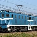 臨単8013レ デキ303+デキ506
