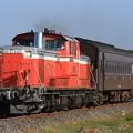 試9221レ DD51 842+旧型客車 1両(スハフ42-2234)+DD51 895