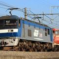 Photos: 単6795レ EF210 136+DE10 1142