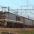 回9891レ EF64 1001+旧型客車 3両