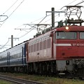 Photos: 回8421レ EF81 134+12系 5両+C57 180