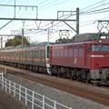 Photos: 配9746レ EF81 141+211系(元)高タカA61+A60編成 8両