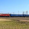 Photos: 配9145レ EF81 133+オハ25-503+オハネフ25-12