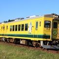 Photos: 104D いすみ鉄道いすみ350型351号車+いすみ300型302号車