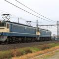 配6794レ EF65 2119+EF65 2121+コキ+タキ+ホキ+コキ