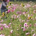 花を駆ける少女