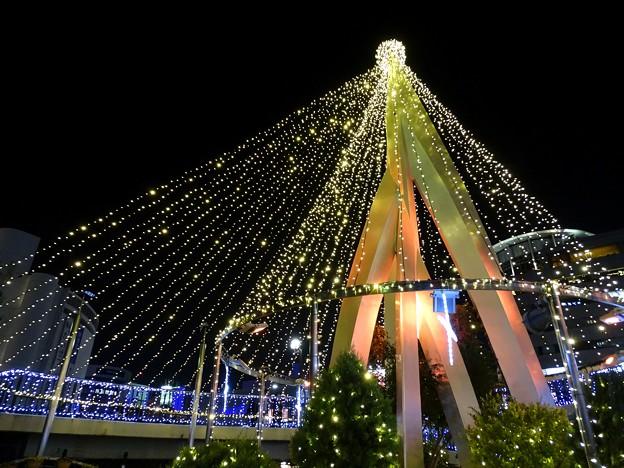 Photos: light tree