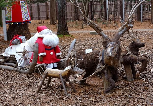 サンタが森にやってくる
