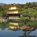 写真: 京都どす