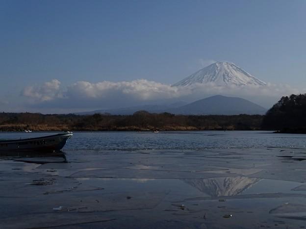 Photos: 結氷