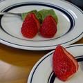 写真: strawberry fields forever