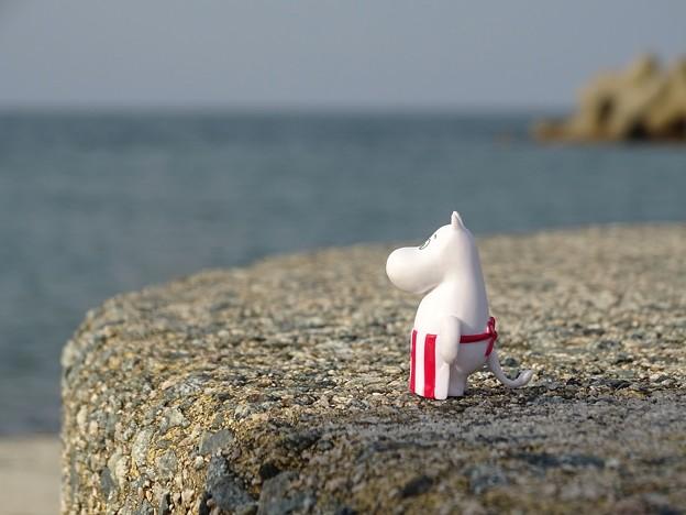 写真: 海を見ていた午後