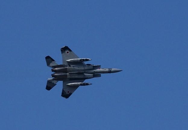 F-15Jアグレッサー
