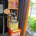 Photos: みきゃんおみくじ