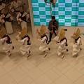 Photos: 阿波踊り空撮