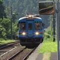 Photos: 夏列車